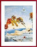 Salvador Dali Póster Impresión Artística con Marco (Plástico) - Sueño Causado Por El Vuelo De Una Abeja Alrededor De Una Granada Un Segundo Antes De Despertar (50 x 40cm)