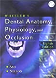 Wheeler's Dental Anatomy, Physiology and Occlusion by Major M. Ash Jr. BS DDS MS MDhc (2003-01-28)