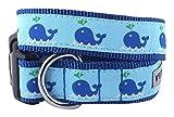 The Worthy Dog Squirt Halsband, blau, L