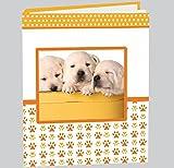 Album Foto Cuccioli - 30 Fogli in pergamena con velina - rilegatura a libro - misure 24x30cm