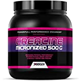 Créatine Micronisée 500 g Naturel