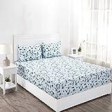 Maspar Superfine 210 TC Cotton Double Bedsheet with 2 Pillow Covers - Floral, Blue