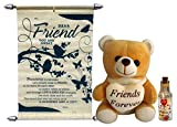 Teddy With Friendship Scroll Card & Mess...