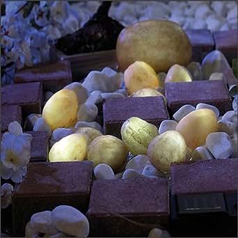 Lunartec cailloux lumineux à lED solaires pour jardin et terrasse & co.