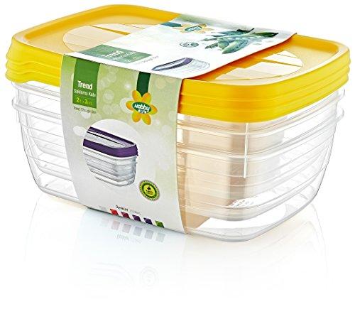 hobby-life-2-l-3-pieces-en-plastique-tendance-de-rangement-rectangle-food-saver-coffret-transparent
