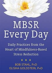 MBSR Every Day: Daily Practices from the Heart of Mindfulness-Based Stress Reduction by Elisha Goldstein PhD (2015-06-01)