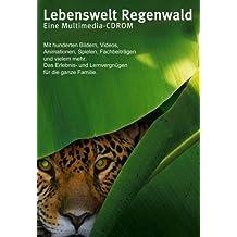 Lebenswelt Regenwald