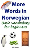 More Words in Norwegian: Basic vocabulary for beginners (Learn Norwegian Book 2) (Norwegian Edition)