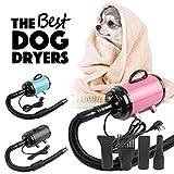 Wonderlife 2800W Hairdryer Hair Dryer Adjustable Fur Blower Heater Pet Dog Grooming