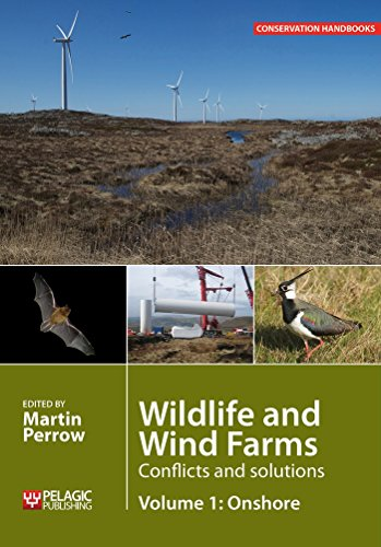 wildlife-and-wind-farms-offshore-conflicts-and-solutions