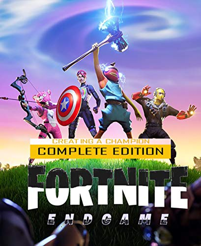 Fortnite - Creating a champion (English Edition)