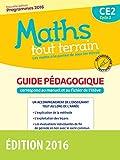 Maths tout terrain CE2 : Guide pédagogique