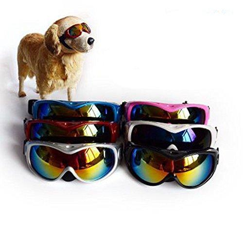 FENG High - End - großer Hund Sonnenbrille Pet - Brille Hund Sonnenbrille großer Hund Ski - Brille windschutzscheibe UV - Schutz,weiße