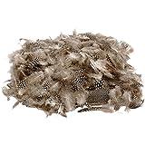 Plumas de gallina de Guinea, natural, 50gr