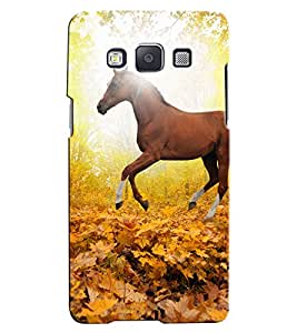 Citydreamz Horse/jungle/Forest/Leaves/Sunshine/Nature Hard Polycarbonate Designer Back Case Cover For Samsung Galaxy Grand Max G7202