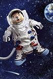 Avanti Karten - Humorkarte Geburtstagskarte Wüstenhund im Weltraum 94-1024