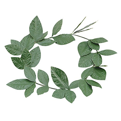 Bristol Novelty BA480 grün Laurel Leaf, Kopfband, One size