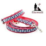 Halsband + Leine, Hundehalsband, Hundeleine, Hundehalsband + Hundeleine,Set für Hunde, Set: Hundehalsband und Leine, Maritimes Hundehalsband, maritime Hundeleine,Hund