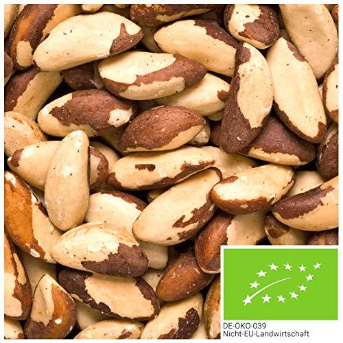1kg de noix du Brésil BIO issues de la cueillette sauvage, noix du Brésil entières de Bolivie, naturelles et non traitées