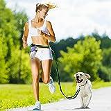 Aodoor Hunde frei Leine Freisprech Hund Leine Jogging-Leine Nylon Hunde frei Hundeleine Grün
