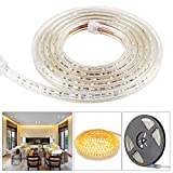 5050 SMD LED Stripes,Lichterkette,Band,Streifen,LED Leiste,LED Lichtleiste,LED Bänder,Lichterkette LED,Warmweiß 230V IP65 LED Band mit Stecker 2M Warmweiß