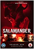 Picture Of Salamander: The Complete Season One [DVD] [2012]