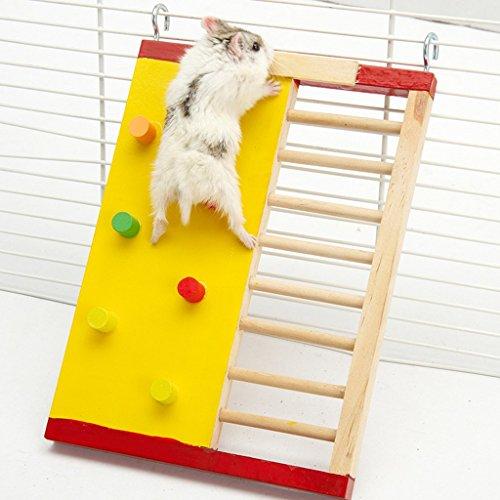 Echelle Escalier en Bois Jouet Coloré pour Hamster