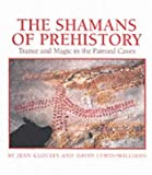 The Shamans of Prehistory: Trance and Magic in the Painted Caves