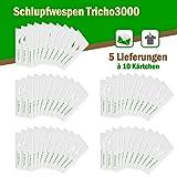 Schlupfwespen gegen Textilmotten - Bis 16 Fächer und Schubladen oder 50 m² Teppichfläche - 5 Lieferungen x 10 Kärtchen
