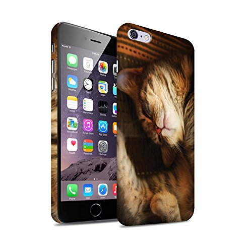Officiel Elena Dudina Coque / Clipser Matte Etui pour Apple iPhone 6+/Plus 5.5 / Oui Maman/Lion/Petit Design / Les Animaux Collection Endormi/Tigré Chat