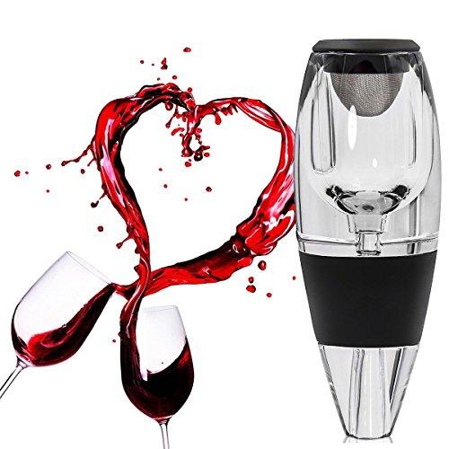 Wuudi Decantador de Vino Tinto, Aireador de Vino con Vertedor | Regalo de Lujo | Dispensador de Vino para tu Casa, Bar, Fiesta