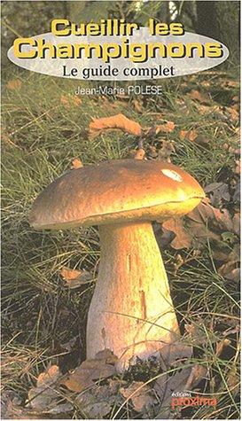 Cueillir les champignons