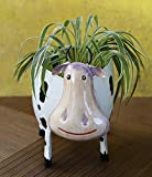 #4: Store Indya Decorative Metal Planter for Home Garden Décor with Cow Design