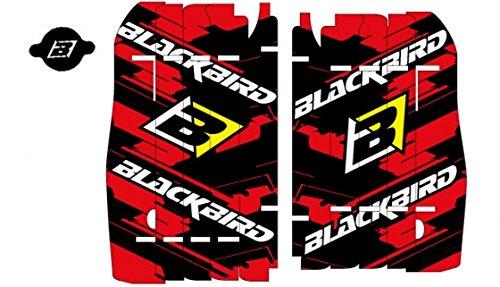 Adhesivos para rejillas radiador Blackbird Racing A104