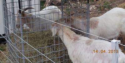 Ziegen - Heuraufe / Futterraufe für Schafe - mit ZWEI rechteckigen Ausschnitten von Hofer24 - Du und dein Garten
