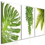 decomonkey Bilder Blätter Natur 180x90 cm 3 Teilig Leinwandbilder Bild auf Leinwand Vlies Wandbild Kunstdruck Wanddeko Wand Wohnzimmer Wanddekoration Deko Pflanzen