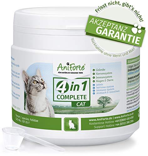 4in1 Complete 60 g. | Condroprotector 100% Natural | Articulaciones y Movilidad | Antioxidantes, Prebióticos, Vitaminas, Zinc y Hierro | Suplemento para Gatos | AniForte