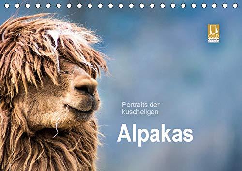 Portraits der kuscheligen Alpakas (Tischkalender 2020 DIN A5 quer): Ein Kalender mit stimmungsvollen Alpaka Portraits. (Monatskalender, 14 Seiten ) (CALVENDO Tiere)