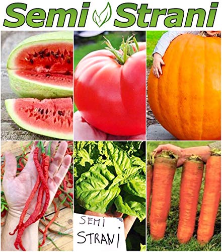 55 semi dei 6 giganti dell'orto: anguria, pomodoro, zucca, basilico, peperoncino, carota, guida