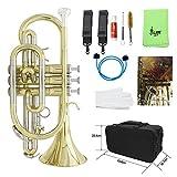Tournoi ammoon Professionnel Flat B Instrument en Cuivre avec Étui de Transport Gants Chiffon de Nettoyage Brosses de Graisse