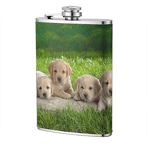Labrador Welpen Gras Hunde Flachmann Tasche Flasche Flagon 8 Unzen Portable Edelstahl Flagon Camping -