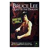 Poster - Quest of the dragon [Size 51 cm x 76 cm]