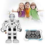 Lorenlli Fit K1 Smart Alpha Robot Programmazione intelligente Robot umanoidi Giocattoli Demo Danza canta Robot giocattolo educativo per bambini
