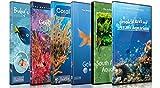 DVD Aquarium Kombi Paket - Beruhigende Szenen und Entspannende Musik von verschiedenen Aquarien und Unterwasser Videos von Tropischen Fischen, Korallen und Meeres Lebewesen