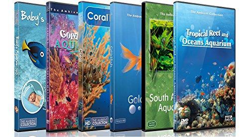 DVD Aquarium Kombi Paket - Beruhigende Szenen und Entspannende Musik von verschiedenen Aquarien und Unterwasser Videos von Tropischen Fischen, Korallen und Meeres Lebewesen Fish Tank Dvd Für Tv