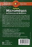 Image de Micromégas : La Princesse de Babylone