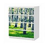 Set Möbelaufkleber für Ikea Kommode MALM 4 Fächer/Schubladen Birke Wald Birkenwald Baum Landschaft Stamm Aufkleber Möbelfolie sticker (Ohne Möbel) Folie 25B1151