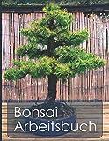 Bonsai Arbeitsbuch: Planungshilfe für die Bonsaigestaltung