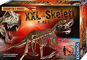 Kosmos 632120 Juguete y Kit de Ciencia para niños Kit de experimentos - Juguetes y Kits de Ciencia para niños (Anatomía, Kit de experimentos, 8 año(s), Niño/niña, 294 mm, 425 mm)