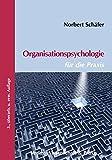 Organisationspsychologie für die Praxis: Mit Erläuterungen zur Personalauswahl nach DIN